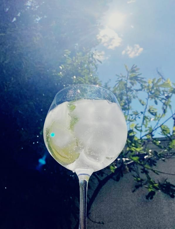 SUMMERS OF GIN
